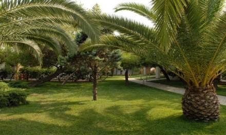 Προσφορά για Verde & Mare Bungalows – Κοκκώνι Κορινθίας